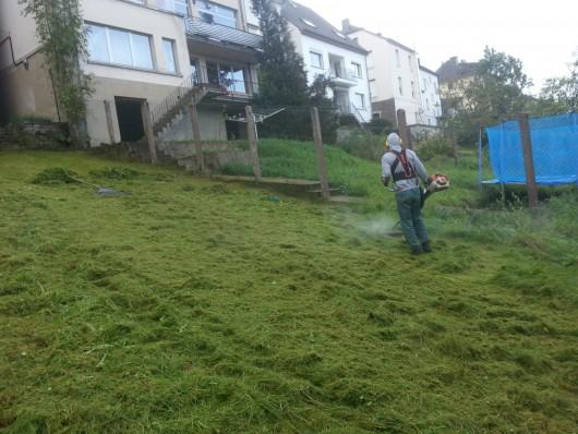 Le projet «entretien des espaces vert»